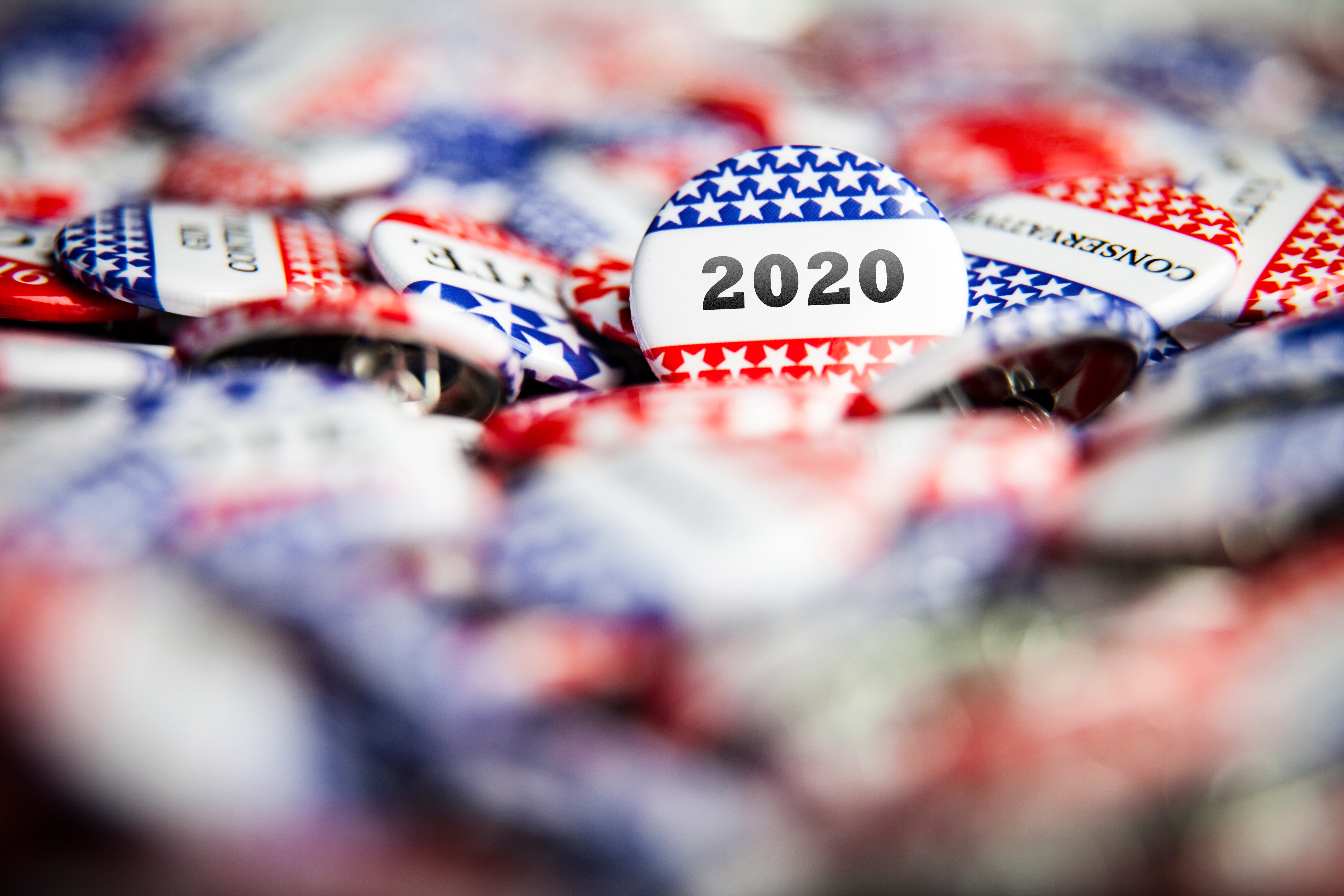 The Biglaw Firm With 2 Dogs In The Hunt For The Democratic Nomination