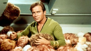 """Have you been misled by a disreputable Tribble dealer?"""