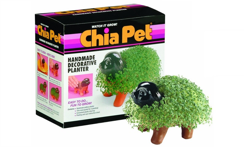 Merit-based compensation: the Chia Pet of Biglaw. Watch it grow!