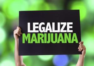 legalize-marijuana-sign-300x213.jpg