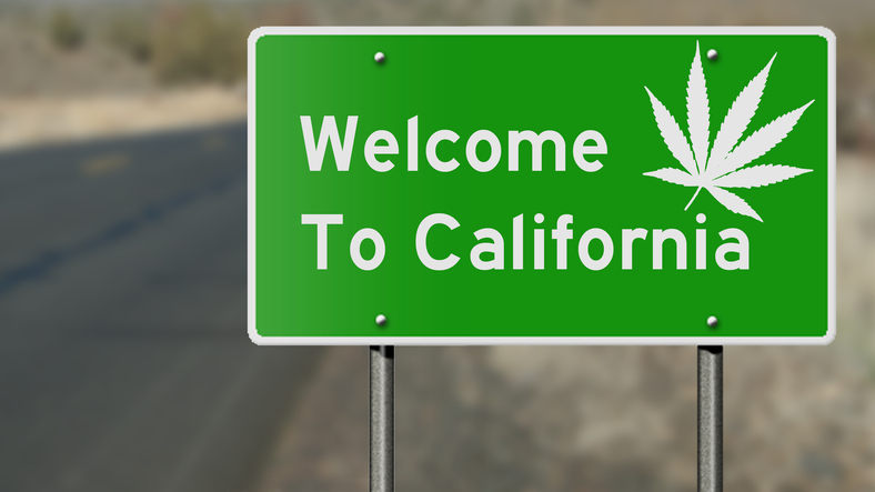 Image result for Legal Pot in California