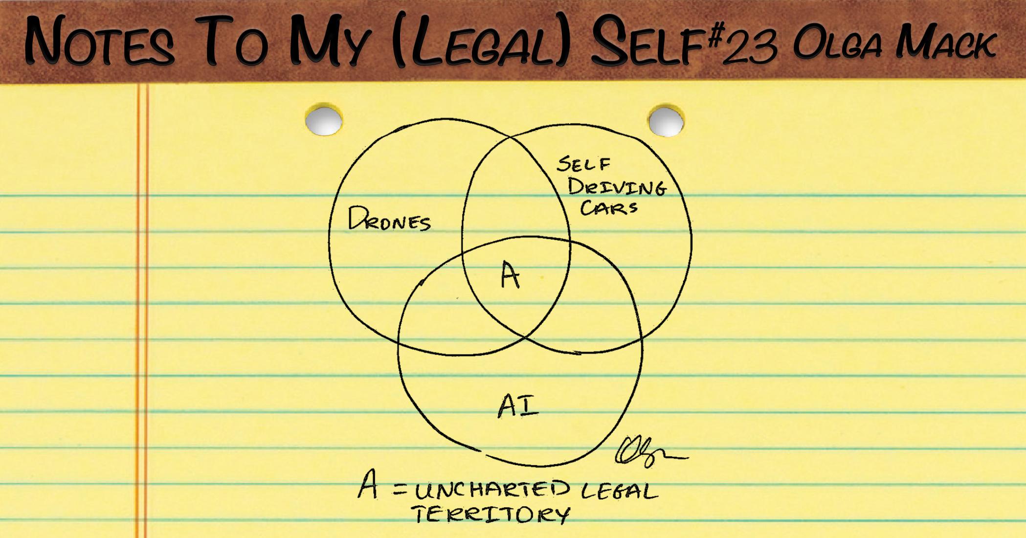 LegalSelf_23.png