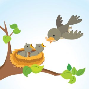 Baby Birds: A Care And Feeding Guide For In-House Counsel ...